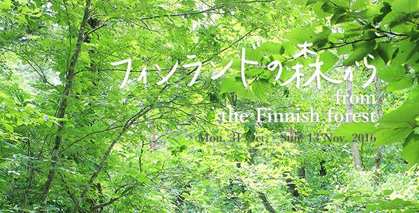 finforest600x306